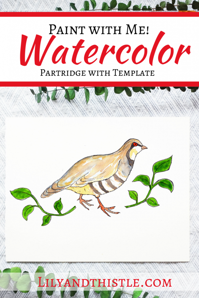 How to Watercolor Paint a Partridge for Beginners and Kids