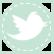 021-RobinsEgg-TwitterIcon