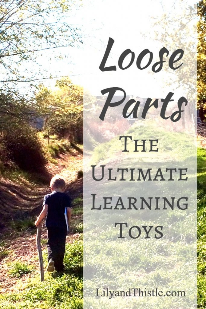 Loose Parts - The Ultimate Learning Toys - Great Tips