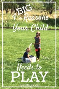 4 Big Reasons Your Child Needs to PLAY