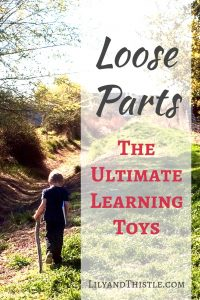 Loose Parts – The Ultimate Learning Toys