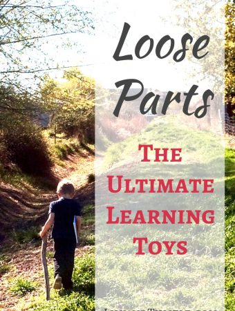 nature toys