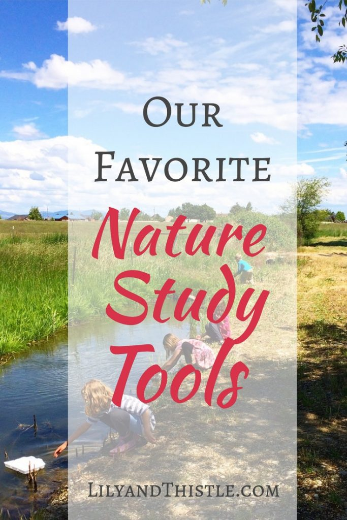 nature journal tools