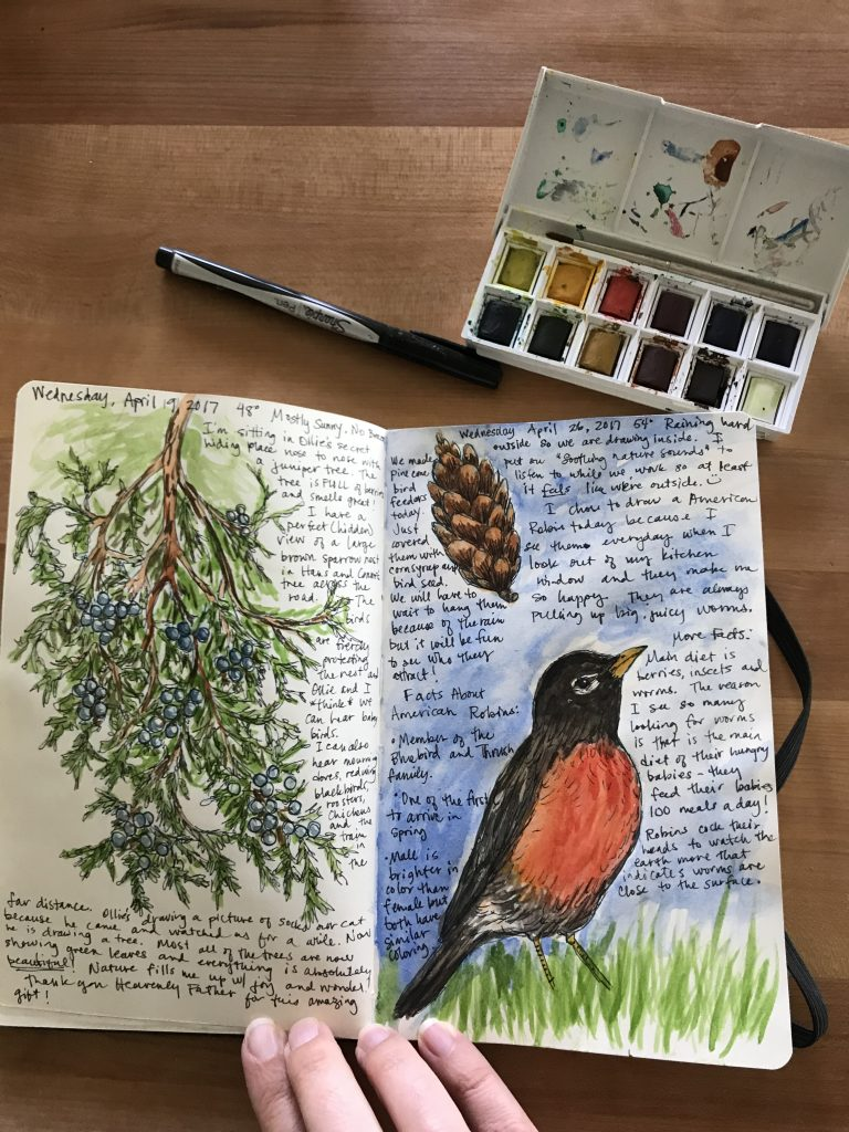 One of my favorite ways to self-care! I love my Nature Journal routine. It gives me inspiration and gives me an excuse to get outside and do art. I've found that kids and adults both love it so it's a great thing to do together. If you are wondering how to get started or why it is so great, read on! #nature #natureart #naturejournal #naturesketchbook #charlottemason #naturedrawings #selfcareroutine
