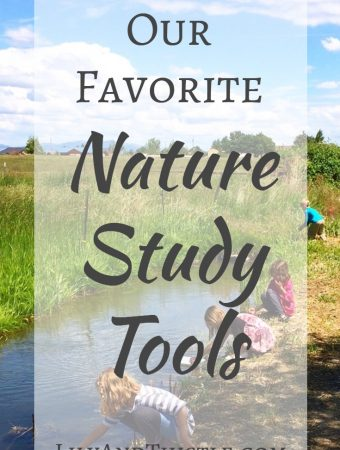 Nature Study Tools - Our Family's Favorites