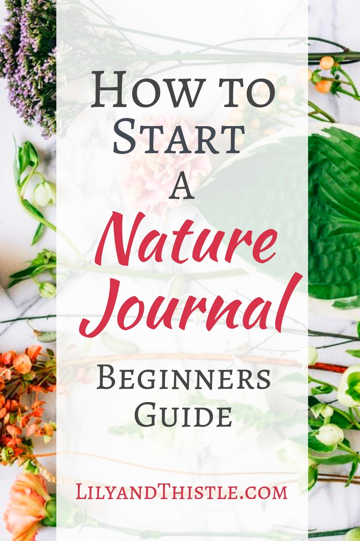 nature journal start guide journaling beginners today adults write drawing