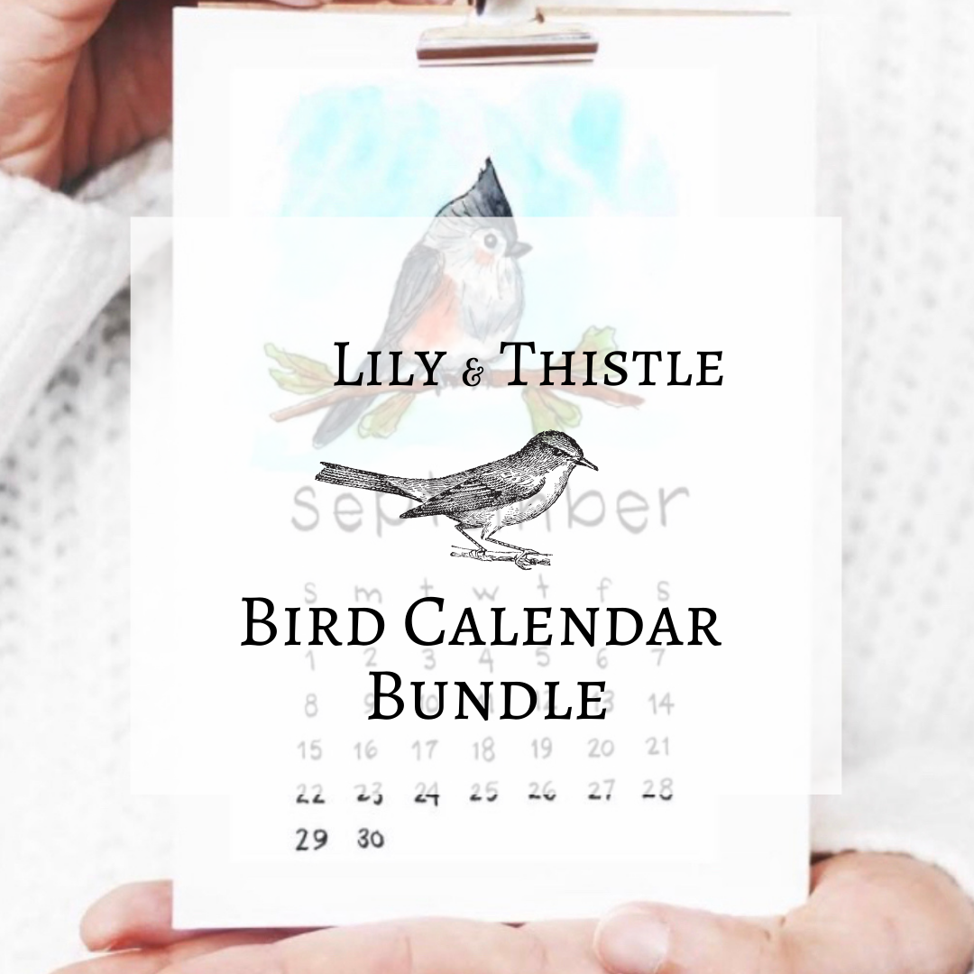 FREE Watercolor Course: The Bird Calendar Bundle