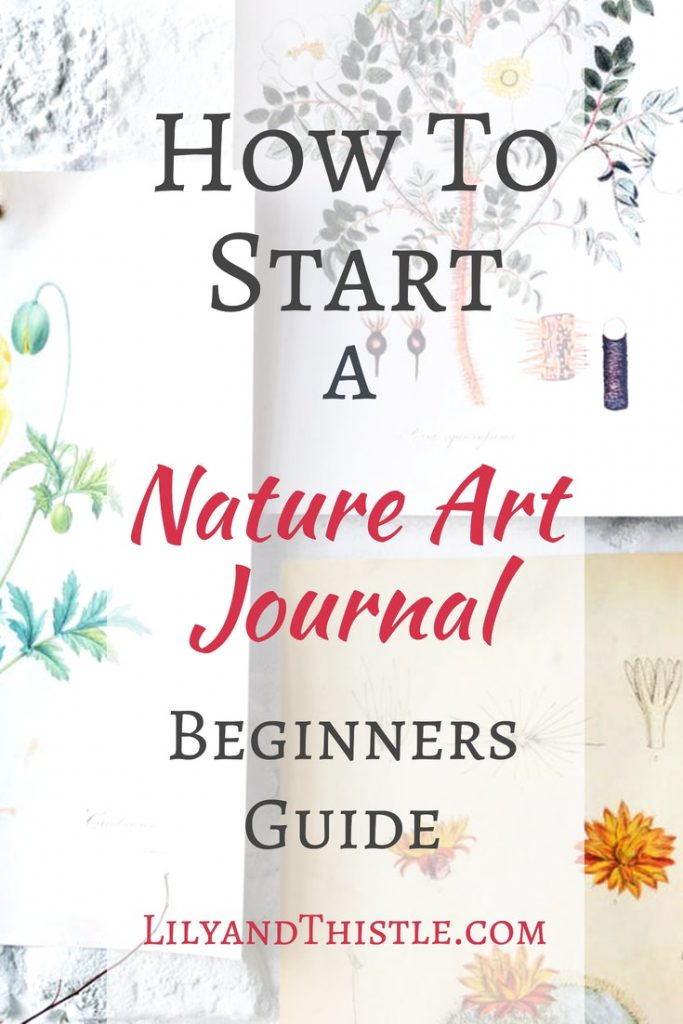 Nature Journaling is fun for kids and adults too. And if you love art, it's a perfect way to practice your drawing skills. It doesn't have to be complicated! Whether you want to improve your drawing skills in a sketchbook or write about what you are experiencing in a pocket journal, this guide will help you get started today! #nature #natureart #naturedrawings #charlottemason #naturesketchbook #naturejournal