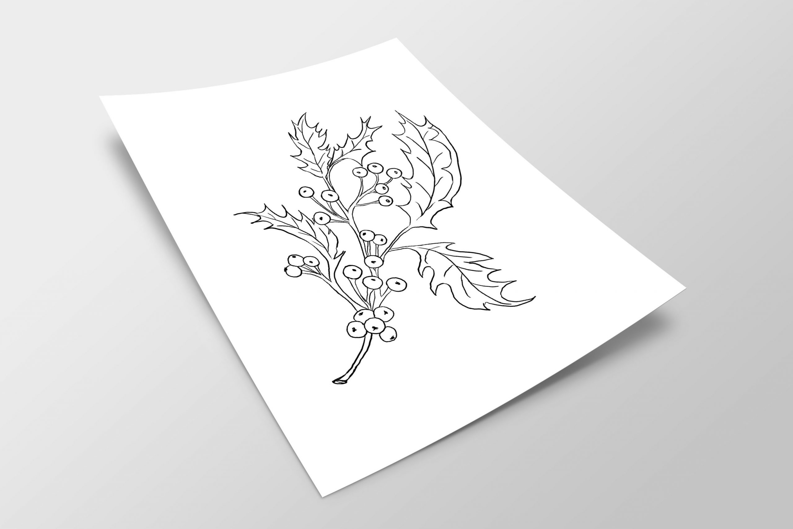 LT Holly Outline Mockup - Lily & Thistle