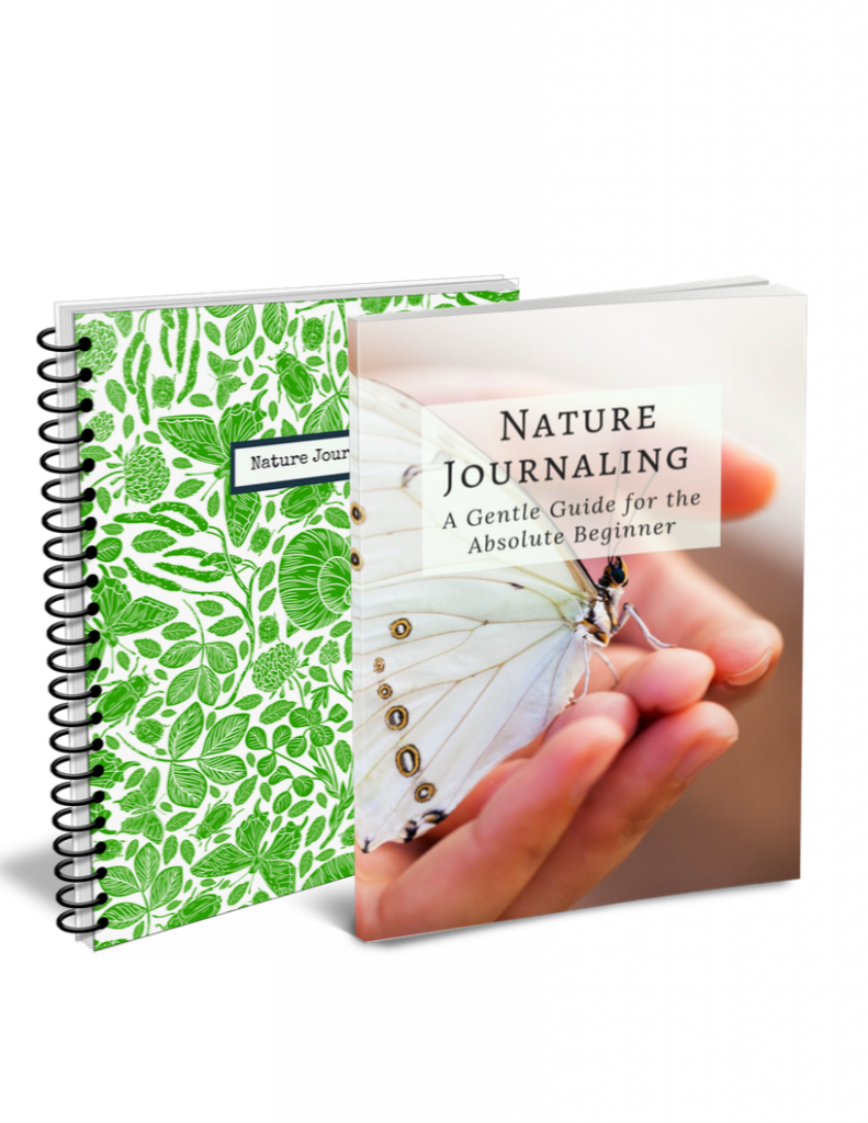 Nature Journal for sale