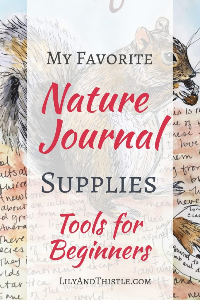 All of the supplies you need to get started with nature journaling. From watercolor sets to reference books.