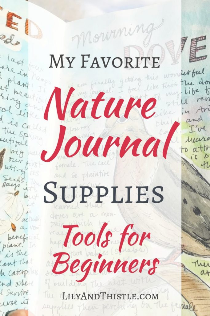 Are you new to nature journaling? Want to get the kids outside in nature or are you looking for self-care for yourself? This list of supplies will help you get started!
