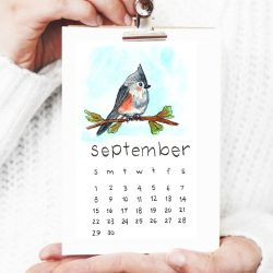 Calendar Instagram (7)