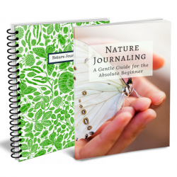 Nature Journal Bundle